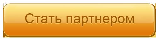 stat_partner